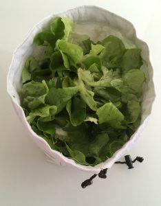 Sac à salade ouvert.